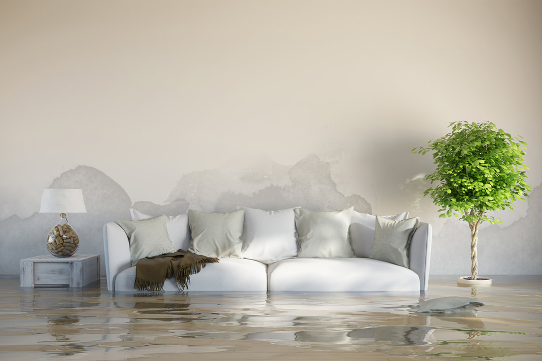 How an Insurance Inspection Helps Homeowners to Minimize the Risk of Flood Damage