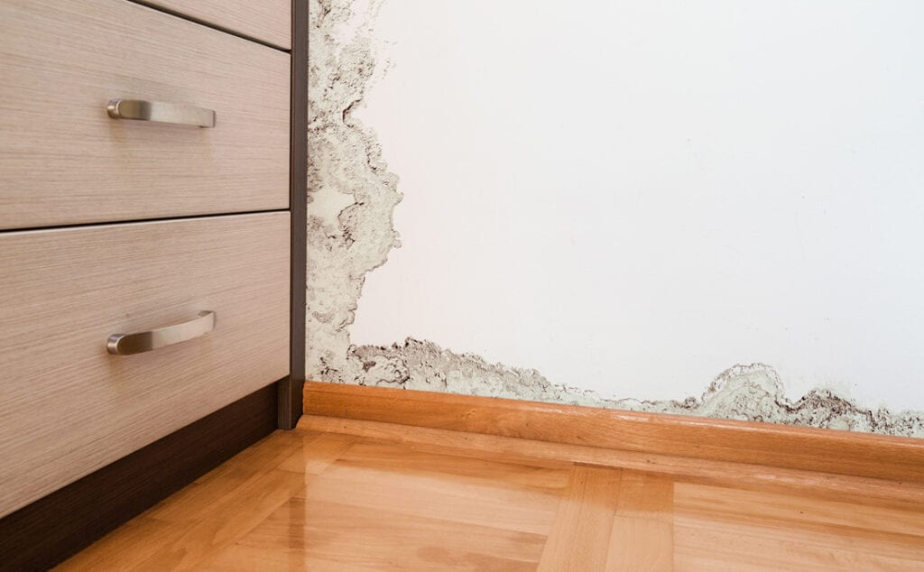 How Can a Field Inspection Minimize Your Risk of Insuring a Property with Existing Damage?